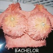 Bachelorpic